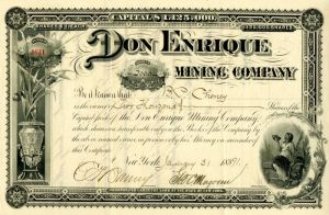 Don Enrique Mining Company Issued to B.P. Cheney