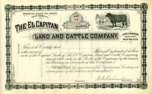 El Capitan Land and Cattle Company - Stock Certificate - SOLD