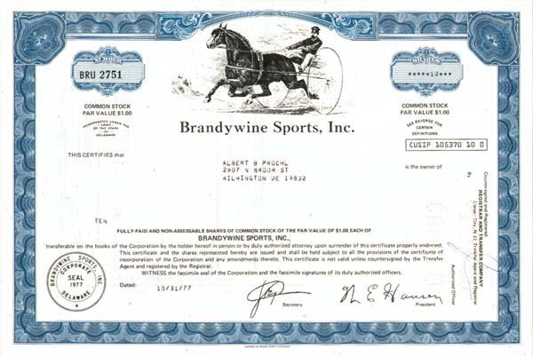 Brandywine Sports, Inc