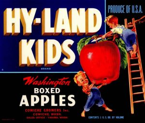 Hy-Land Kids - Fruit Crate Label