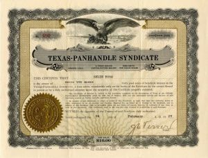Texas-Panhandle Syndicate - SOLD