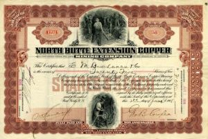 North Butte Extension Copper Mining Company
