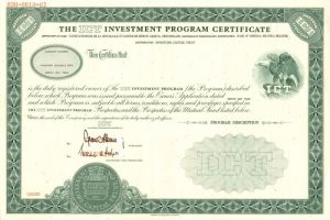ICT Investment Program Certificate