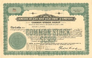 American Gas and Electric Company - SOLD