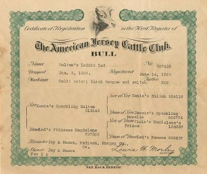 American Jersey Cattle Club