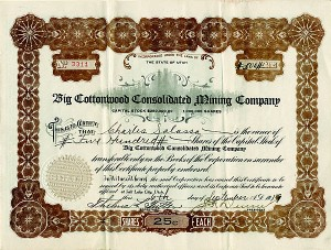 Big Cottonwood Consolidated Mining Company