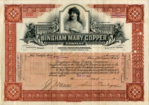 Bingham Mary Copper Company