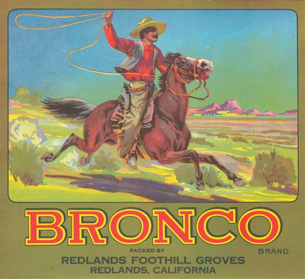 Fruit Crate Label - Bronco