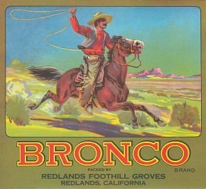 Fruit Crate Label - Bronco