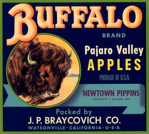 Fruit Crate Label - Buffalo Brand