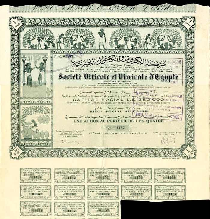 Societe Viticole et Vinicole d'Egypte