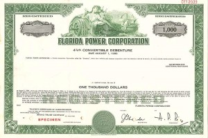 Florida Power Corporation