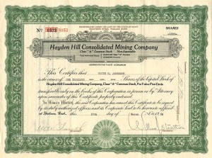 Hayden Hill Consolidated Mining Company