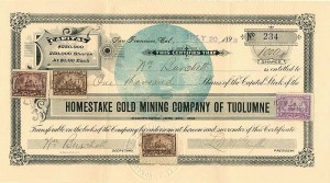 Homestake Gold Mining Company of Tuolumne - SOLD