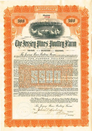 Jersey Pines Poultry Farm Company - Stock Certificate
