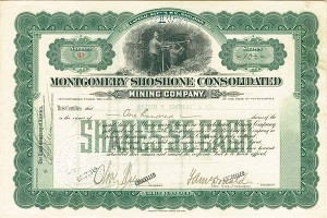 Montgomery Shoshone Consolidated Mining Company