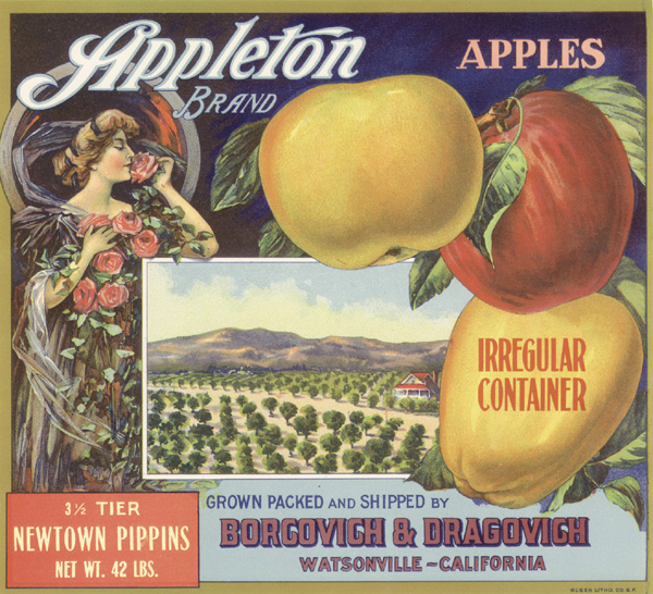 "Fruit Crate Label ""Appleton-Watsonville, CA"""