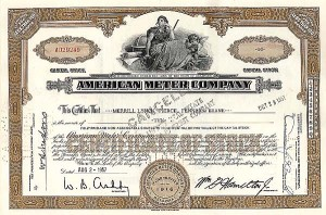 American Meter Company