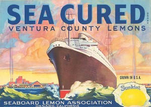 Fruit Crate Label - Sea Cured