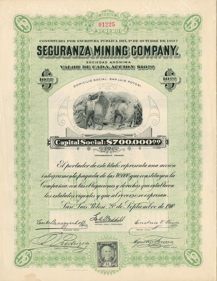 Seguranza Mining Company