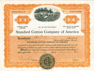 Standard Cotton Company of America