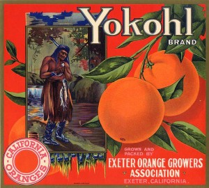 Fruit Crate Label - Yokohl California Oranges